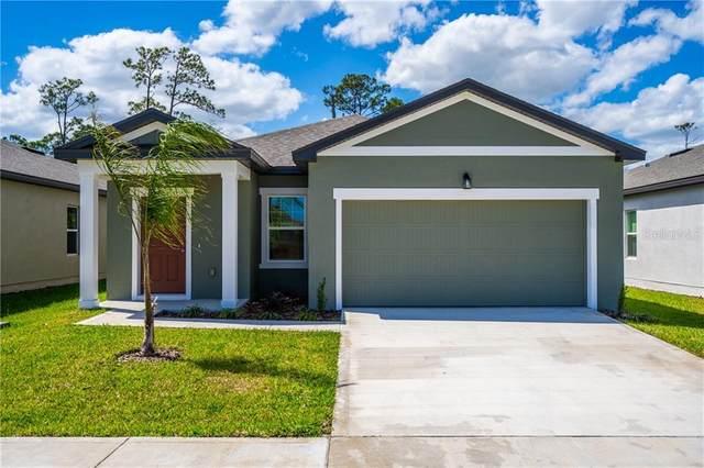 3080 Neverland Drive, New Smyrna Beach, FL 32168 (MLS #O5853963) :: Florida Life Real Estate Group