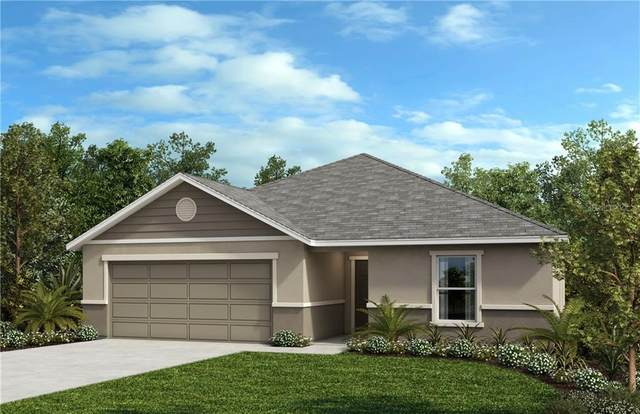 15913 Bradicks Court, Clermont, FL 34711 (MLS #O5854029) :: Bustamante Real Estate