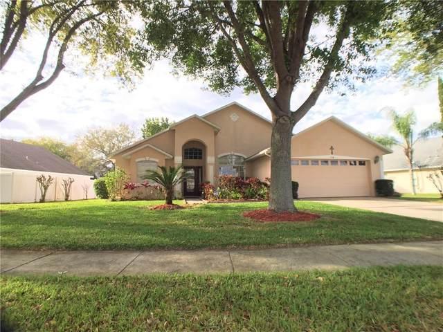 974 Haverford Drive, Ocoee, FL 34761 (MLS #O5854228) :: Bustamante Real Estate