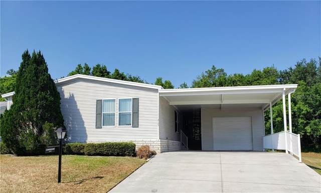4123 Greenbluff Ct #799, Zellwood, FL 32798 (MLS #O5854444) :: Homepride Realty Services