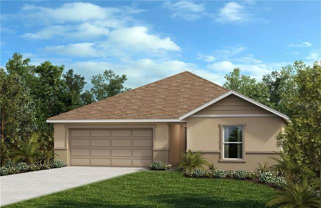 2533 Bulrush Drive, Saint Cloud, FL 34769 (MLS #O5854462) :: The Light Team