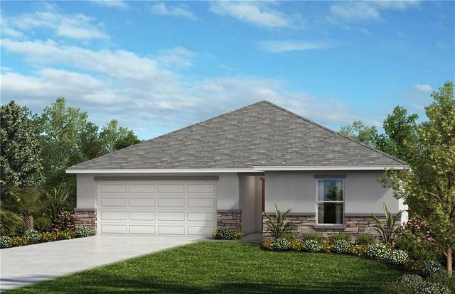 2536 Bulrush Drive, Saint Cloud, FL 34769 (MLS #O5854464) :: The Light Team