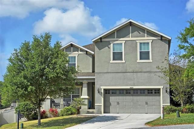 30035 Messara Cove, Mount Dora, FL 32757 (MLS #O5854469) :: Premier Home Experts