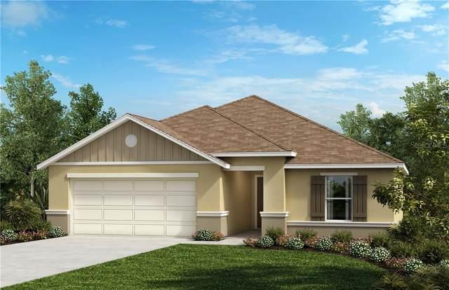 2289 Gladiolus Lane, Mascotte, FL 34753 (MLS #O5854477) :: Premium Properties Real Estate Services