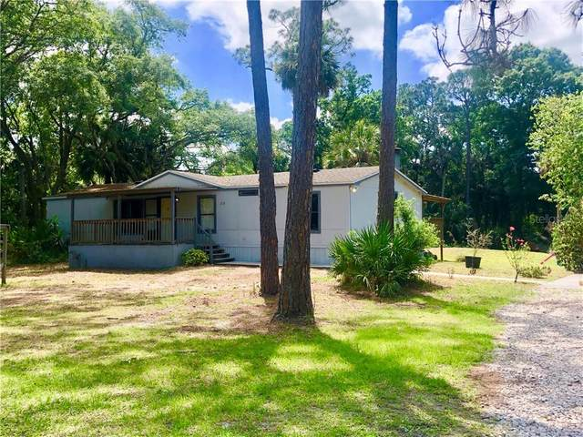 2115 Blue Fish Place, Geneva, FL 32732 (MLS #O5855050) :: Your Florida House Team