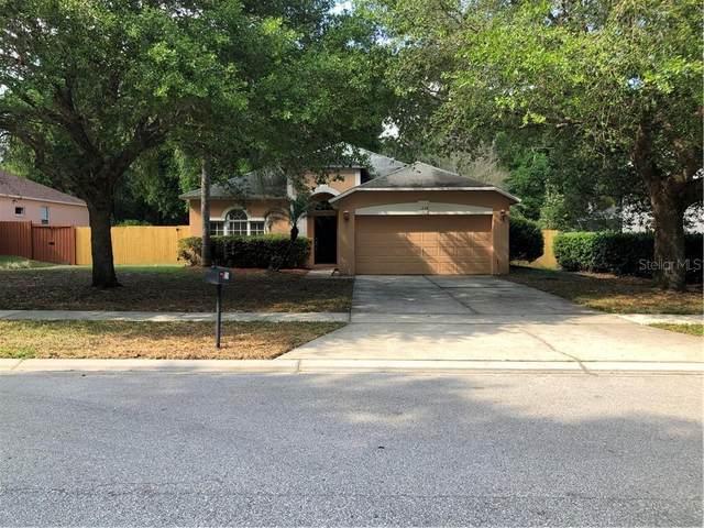 1239 Reagans Reserve Boulevard, Apopka, FL 32712 (MLS #O5855302) :: RE/MAX Premier Properties