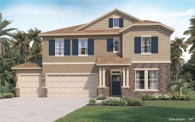459 Cavesson Street, Apopka, FL 32712 (MLS #O5855508) :: Heckler Realty