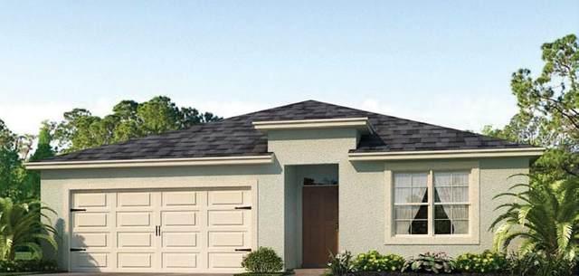 436 Burnham Circle, Auburndale, FL 33823 (MLS #O5855610) :: The Figueroa Team