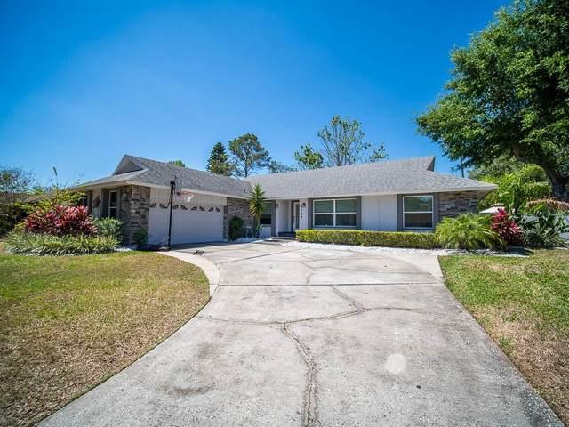 5704 Sago Palm Drive, Orlando, FL 32819 (MLS #O5855625) :: Team Bohannon Keller Williams, Tampa Properties