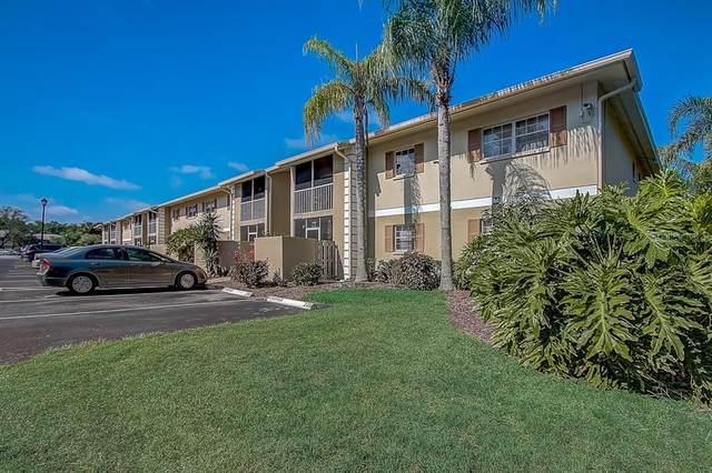 1648 Sunny Brook Lane NE M101, Palm Bay, FL 32905 (MLS #O5855671) :: The Figueroa Team