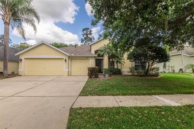 16906 Falconridge Road, Lithia, FL 33547 (MLS #O5855957) :: Team Bohannon Keller Williams, Tampa Properties
