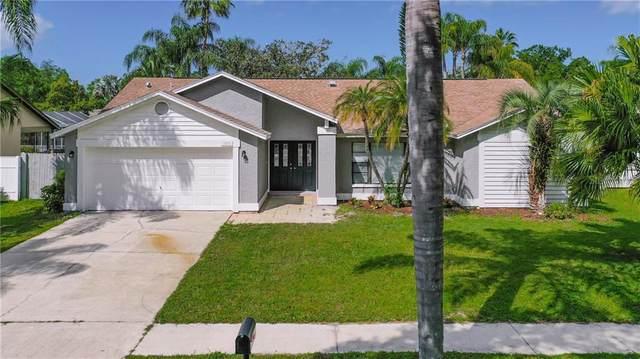 1031 Ridge View Lane, Palm Harbor, FL 34683 (MLS #O5856055) :: Lock & Key Realty