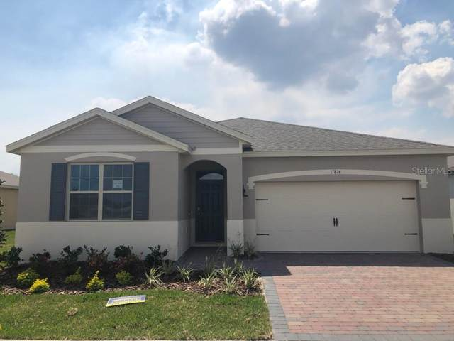 17814 Blazing Star Circle, Clermont, FL 34711 (MLS #O5856188) :: Your Florida House Team