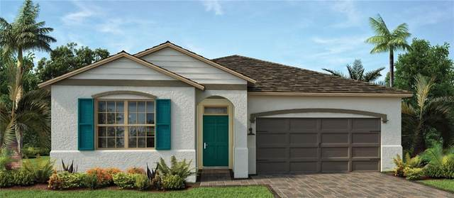 17882 Blazing Star Circle, Clermont, FL 34711 (MLS #O5856191) :: Your Florida House Team