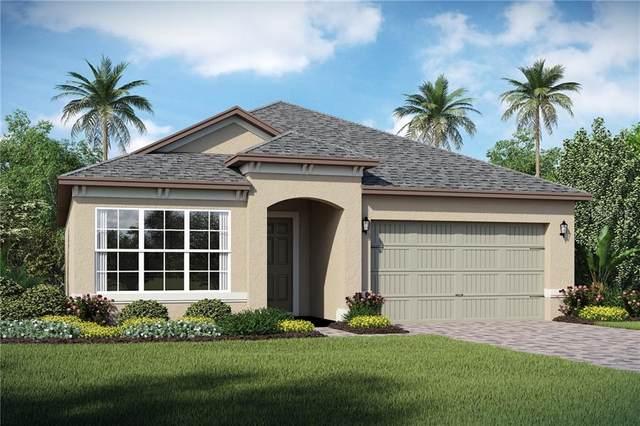1965 Estuary Lane, Kissimmee, FL 34747 (MLS #O5856200) :: Premium Properties Real Estate Services