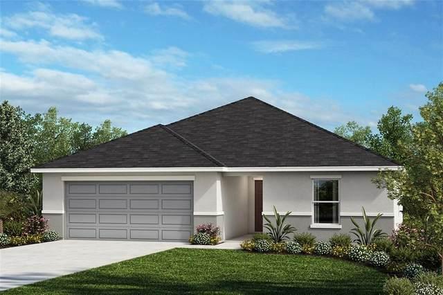 3240 Eagle Hammock Circle, Kissimmee, FL 34743 (MLS #O5856341) :: Armel Real Estate
