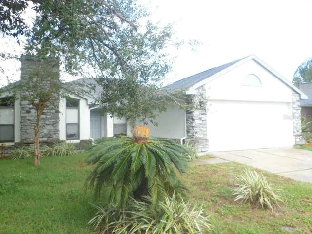 1007 Hornbeam Street, Oviedo, FL 32765 (MLS #O5856449) :: Real Estate Chicks