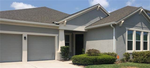 4890 Palmetto Park Drive, Winter Garden, FL 34787 (MLS #O5856663) :: Armel Real Estate