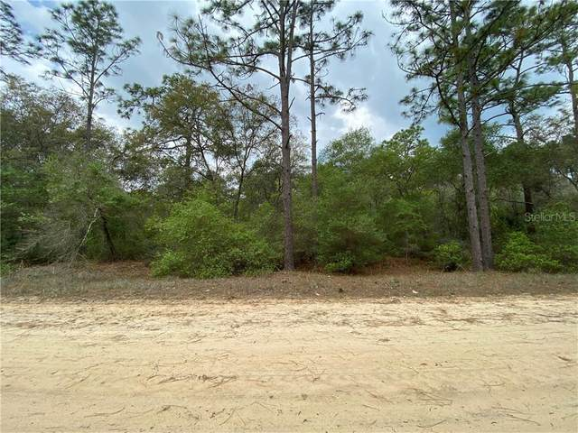 305 Incline Road, Satsuma, FL 32189 (MLS #O5856845) :: Heckler Realty