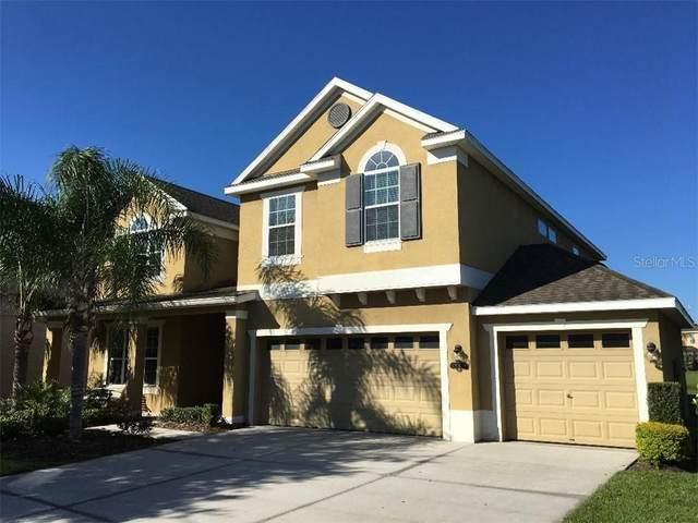 19311 Yellow Clover Drive, Tampa, FL 33647 (MLS #O5856852) :: Team Bohannon Keller Williams, Tampa Properties