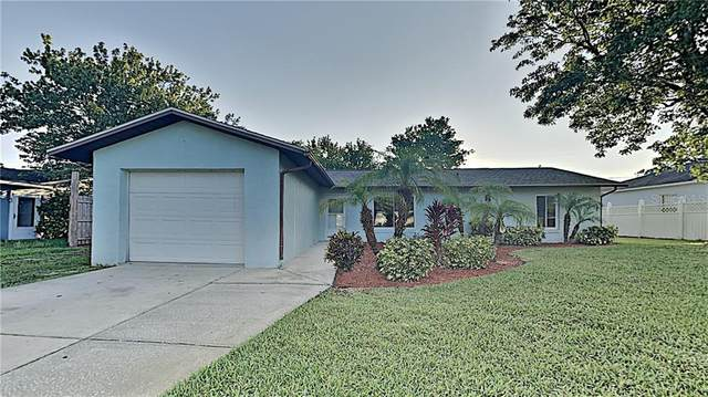 3319 Yule Tree Drive, Edgewater, FL 32141 (MLS #O5856924) :: Florida Life Real Estate Group