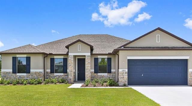 12833 Sugar Court, Grand Island, FL 32735 (MLS #O5858001) :: Griffin Group