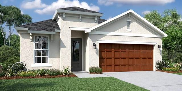 19457 Fort King Run, Brooksville, FL 34601 (MLS #O5859636) :: Delta Realty Int