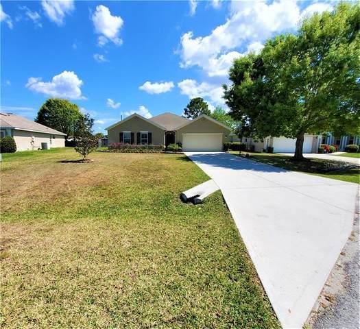 36313 Grand Island Oaks Circle, Grand Island, FL 32735 (MLS #O5859838) :: Griffin Group