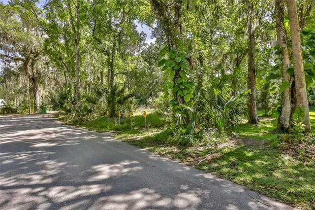 Address Not Published, New Smyrna Beach, FL 32168 (MLS #O5859967) :: Team Bohannon Keller Williams, Tampa Properties