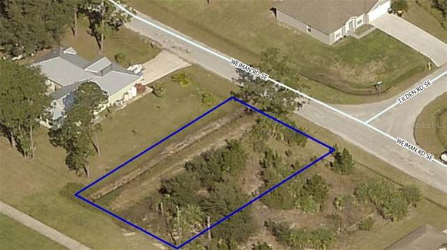 1366 Weiman Road SE, Palm Bay, FL 32909 (MLS #O5860020) :: Carmena and Associates Realty Group