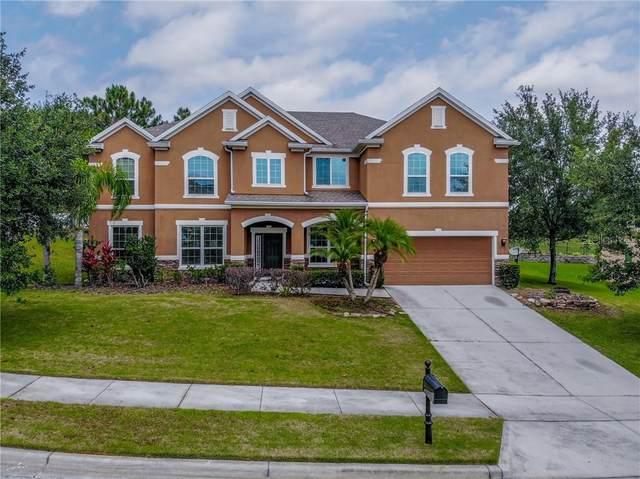 797 Daisy Hill Court, Apopka, FL 32712 (MLS #O5860064) :: Carmena and Associates Realty Group