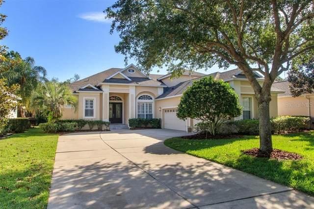 11343 Fenimore Court, Windermere, FL 34786 (MLS #O5860168) :: Florida Real Estate Sellers at Keller Williams Realty