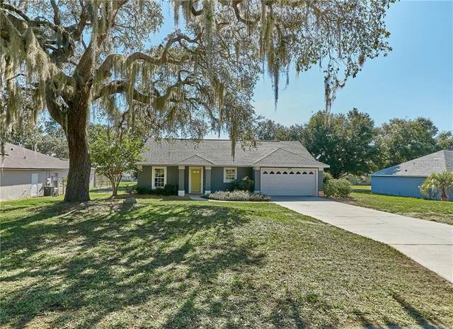 309 N Dixie Drive, Howey in the Hills, FL 34737 (MLS #O5861521) :: Florida Real Estate Sellers at Keller Williams Realty