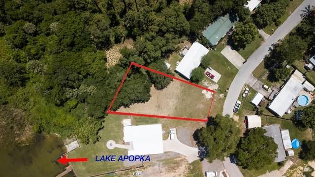 17004 Elderberry Drive, Montverde, FL 34756 (MLS #O5861535) :: Premier Home Experts