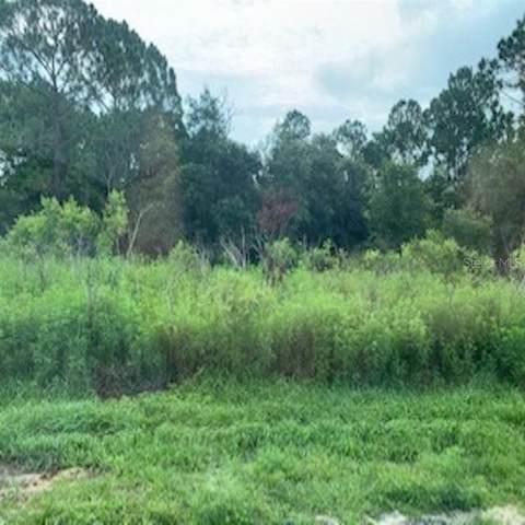 1712 Seabass Lane, Poinciana, FL 34759 (MLS #O5861600) :: Team Bohannon Keller Williams, Tampa Properties
