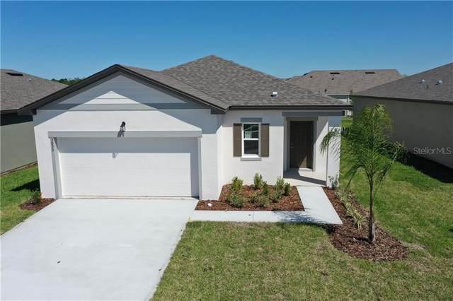 3053 Neverland Drive, New Smyrna Beach, FL 32168 (MLS #O5861724) :: Florida Life Real Estate Group