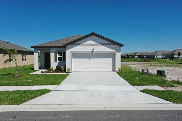 3059 Neverland Drive, New Smyrna Beach, FL 32168 (MLS #O5861729) :: Florida Life Real Estate Group