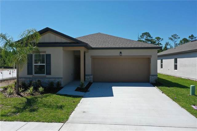 3056 Neverland Drive, New Smyrna Beach, FL 32168 (MLS #O5861731) :: Florida Life Real Estate Group