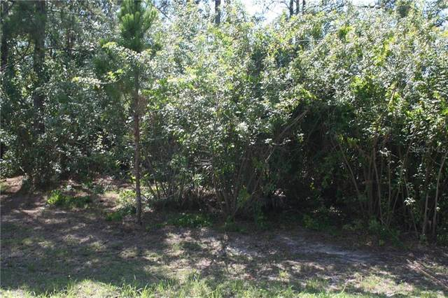 3078 Dagget Avenue SE, Palm Bay, FL 32909 (MLS #O5862183) :: RE/MAX Local Expert
