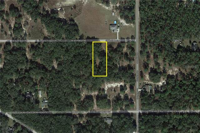 0 SW North Beach Road, Dunnellon, FL 34431 (MLS #O5862201) :: The Duncan Duo Team