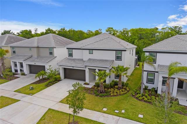 518 Marcello Boulevard, Kissimmee, FL 34746 (MLS #O5862208) :: Positive Edge Real Estate