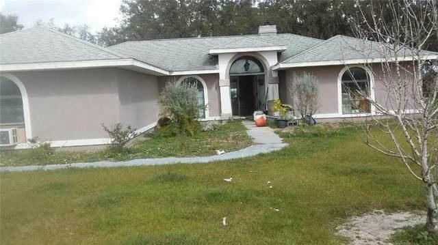 3815 Odom Lane, Groveland, FL 34736 (MLS #O5862839) :: Rabell Realty Group