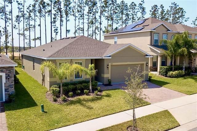 1203 Garrett Gilliam Drive, Ocoee, FL 34761 (MLS #O5863270) :: The Paxton Group