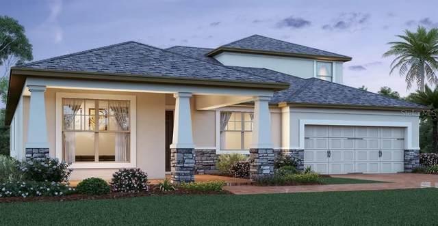2019 Panoramic Circle, Apopka, FL 32703 (MLS #O5863401) :: Florida Real Estate Sellers at Keller Williams Realty