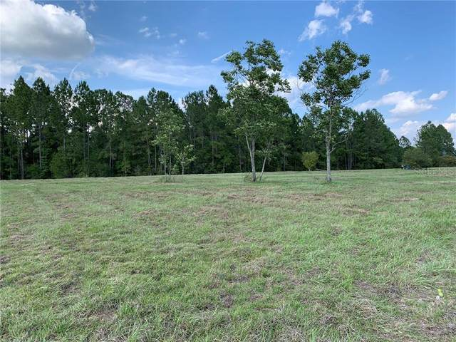 Lot 16 Greengrove Boulevard, Clermont, FL 34714 (MLS #O5863514) :: The Duncan Duo Team