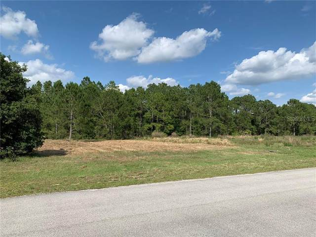 Lot 25 Greengrove Boulevard, Clermont, FL 34714 (MLS #O5863528) :: Zarghami Group