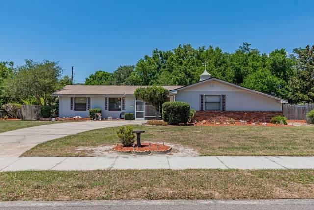 2513 Falkner Road, Orlando, FL 32810 (MLS #O5864006) :: Team Bohannon Keller Williams, Tampa Properties