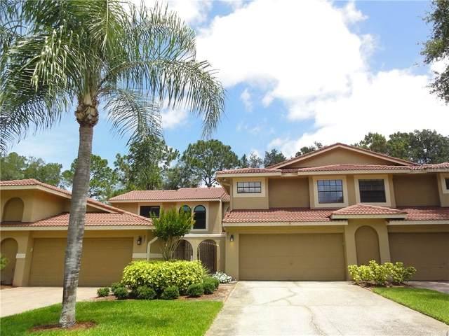 8217 Breeze Cove Lane, Orlando, FL 32819 (MLS #O5865018) :: The Duncan Duo Team