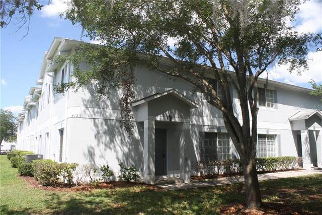 4123 Waterside Island Court, Tampa, FL 33617 (MLS #O5865144) :: Griffin Group