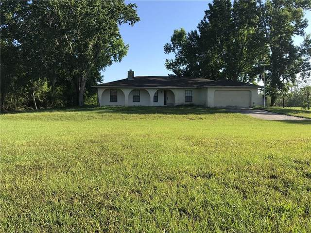 19405 Lake Pickett Road, Orlando, FL 32820 (MLS #O5866029) :: Burwell Real Estate